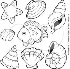 Conch coloring #8, Download drawings