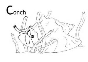 Conch coloring #9, Download drawings