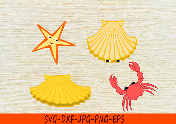 Conch svg #2, Download drawings