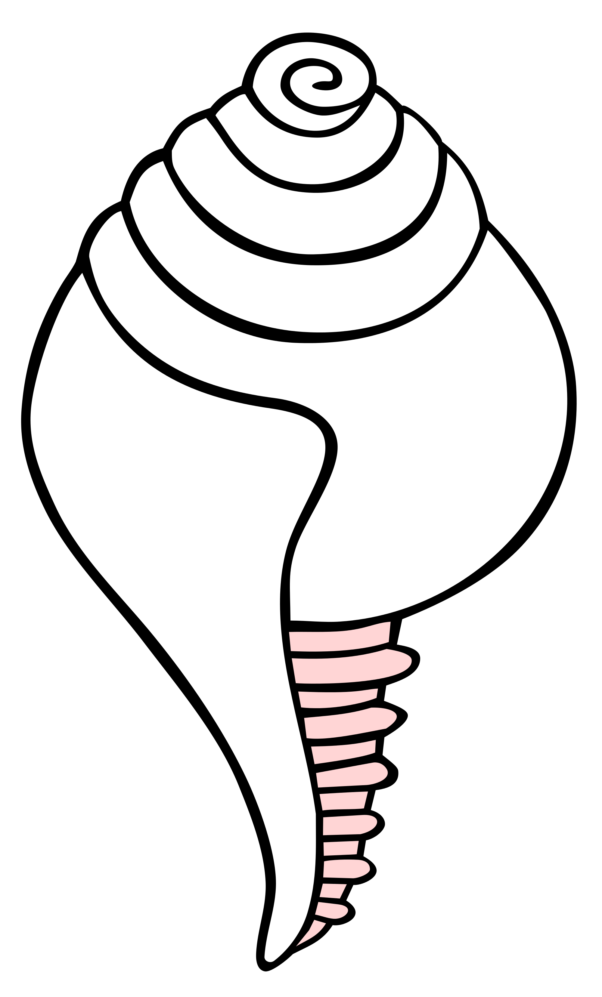 Conch svg #18, Download drawings