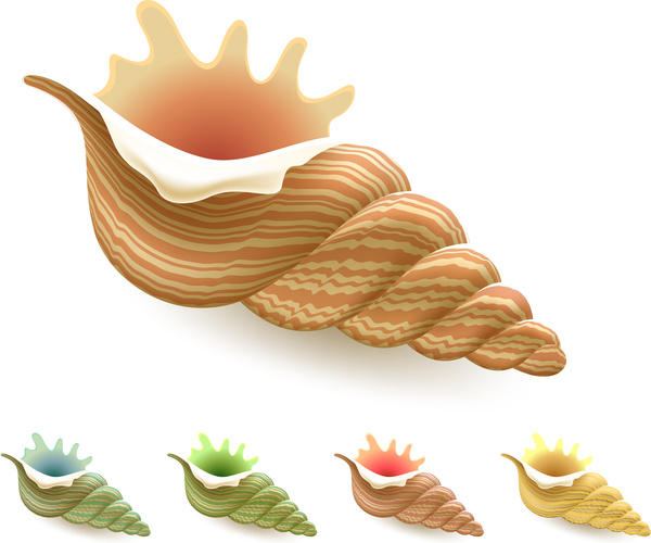 Conch svg #11, Download drawings