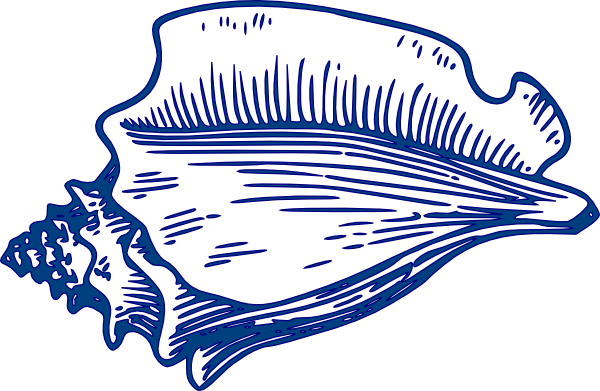 Conch svg #16, Download drawings