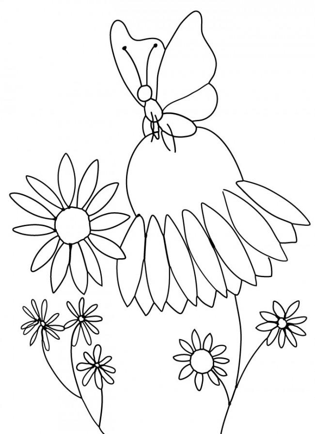 Coneflower coloring #10, Download drawings
