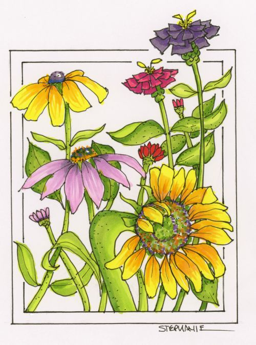 Cone Flower coloring #10, Download drawings