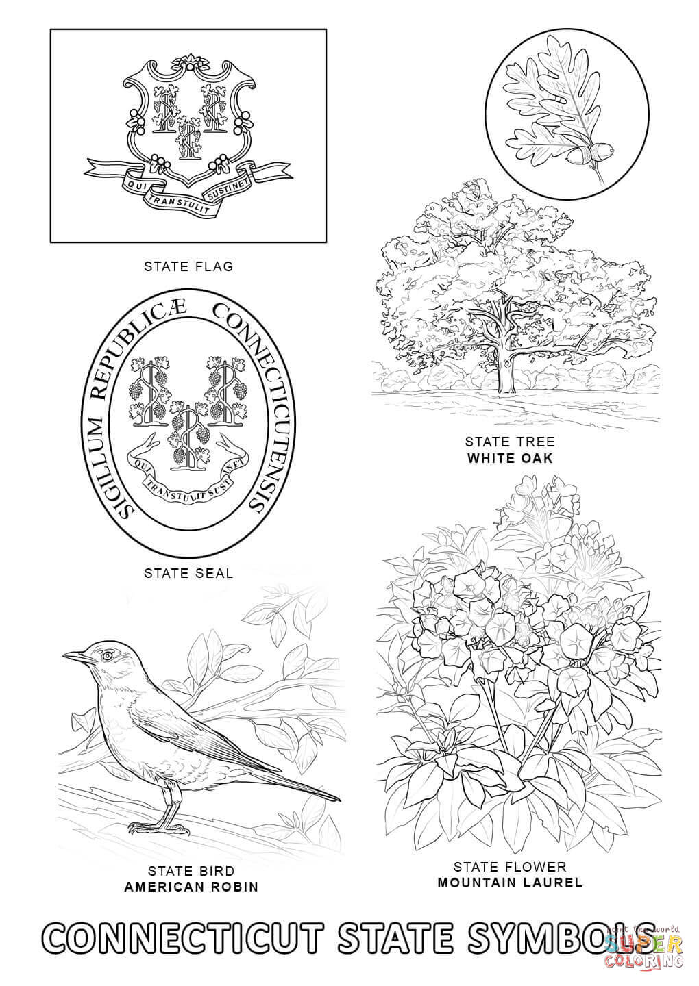 Connecticut coloring #2, Download drawings
