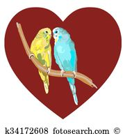 Conure clipart #10, Download drawings