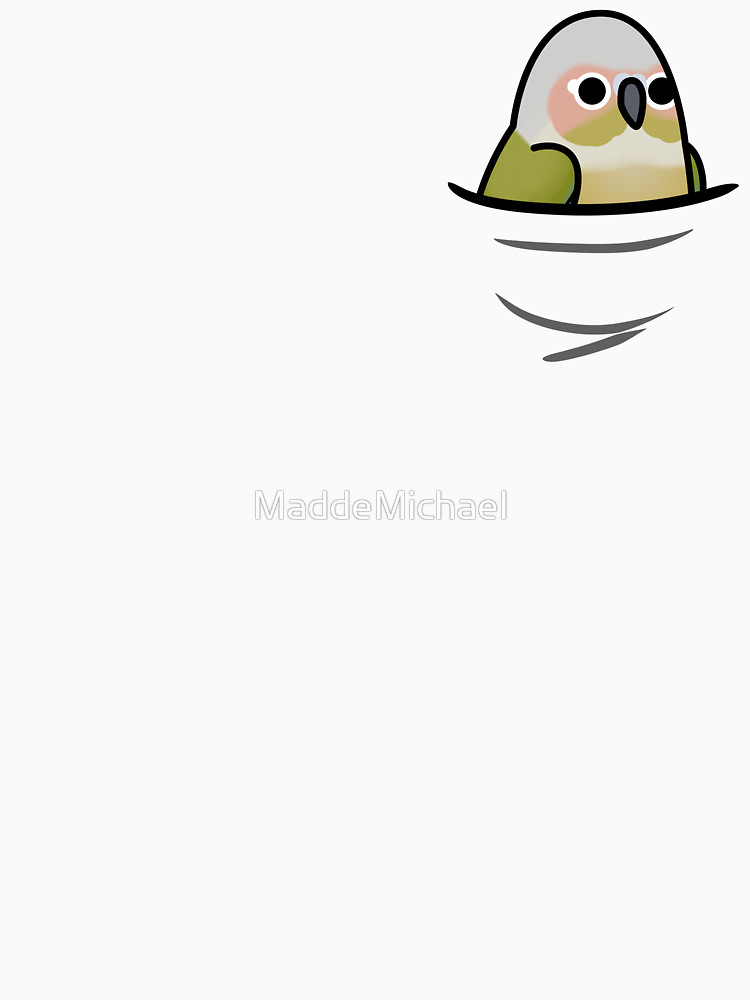 Conure clipart #9, Download drawings