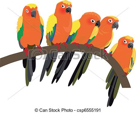 Sun Parakeet clipart #9, Download drawings