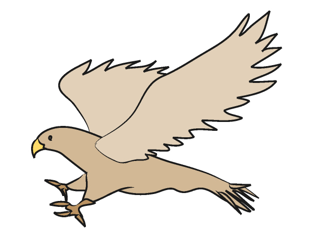 Red-tailed Hawk clipart #14, Download drawings