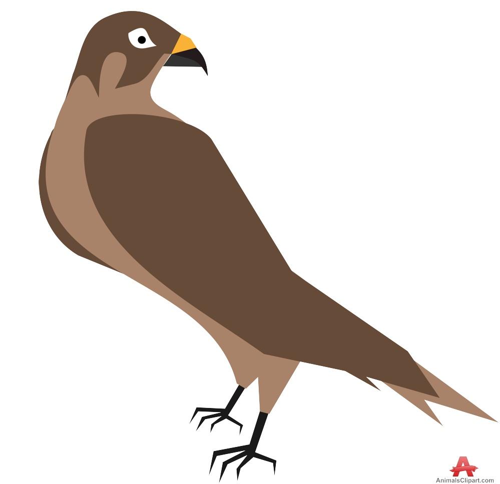 Cooper's Hawk clipart #6, Download drawings