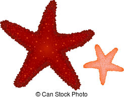 Coral clipart #14, Download drawings