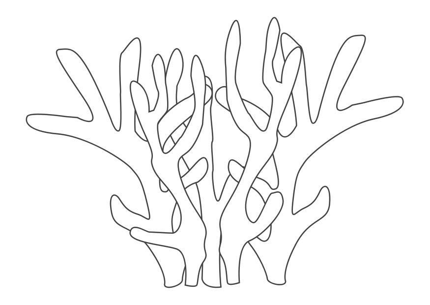 Coral coloring #2, Download drawings