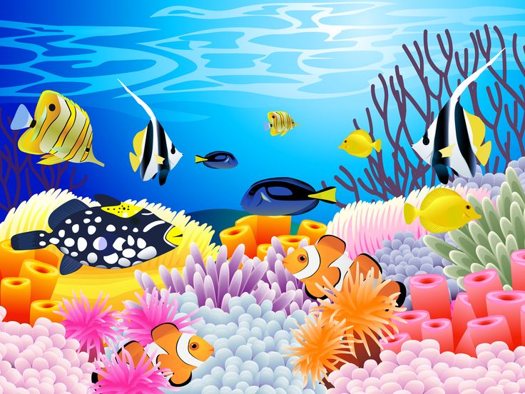 Coral Reef clipart #5, Download drawings