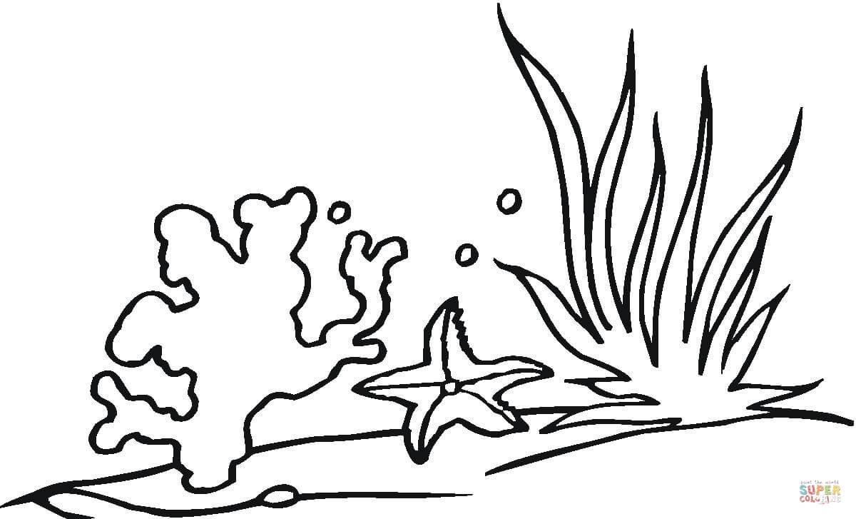 Coral Reef coloring #11, Download drawings