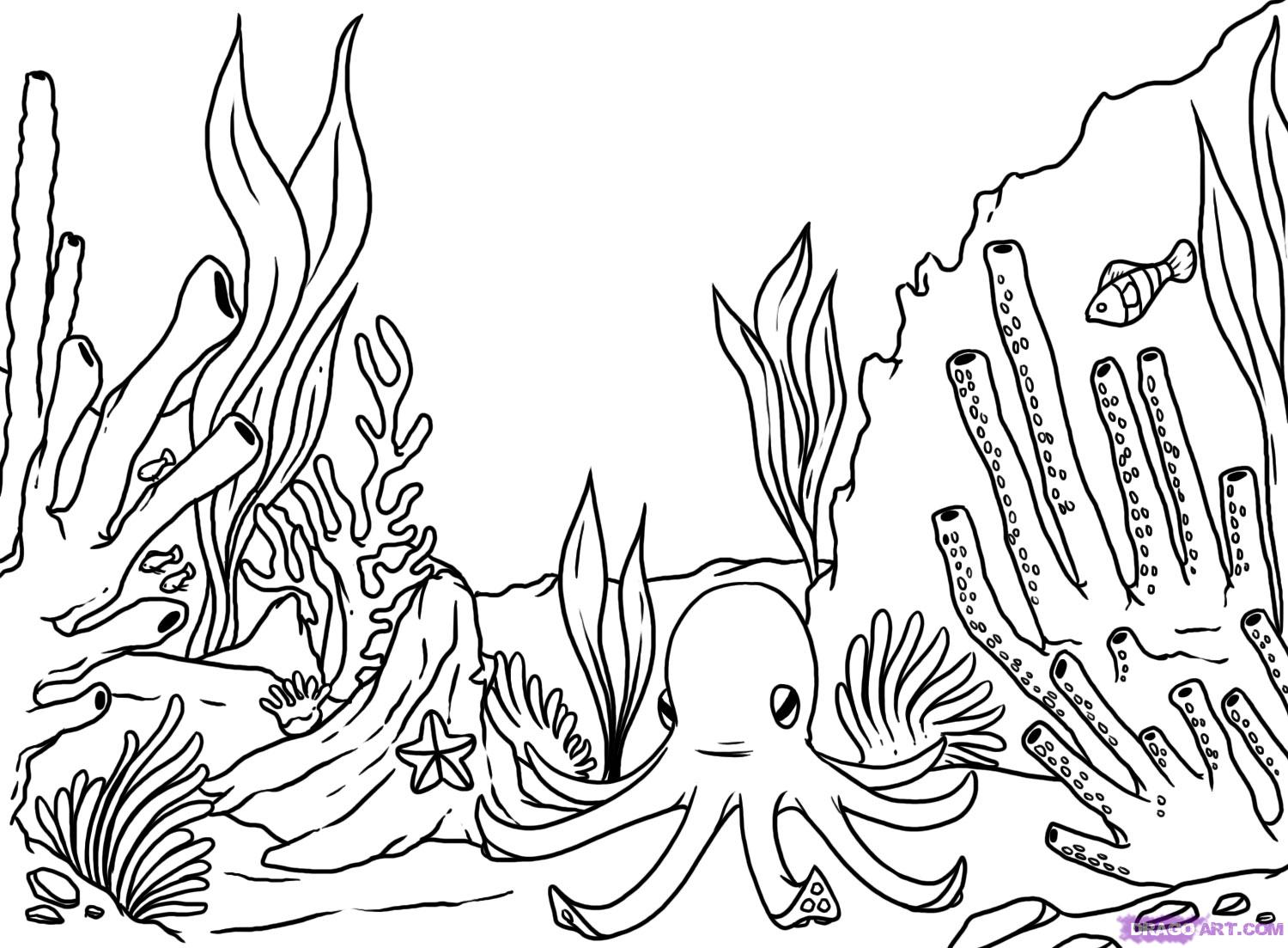 Coral coloring #16, Download drawings