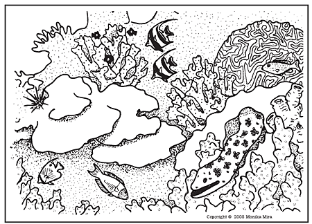 Coral Reef coloring #18, Download drawings