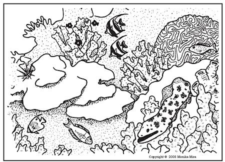 Coral Reef coloring #18, Download drawings