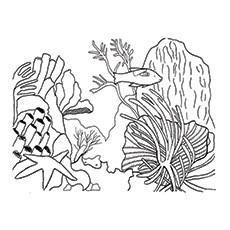Coral Reef coloring #2, Download drawings