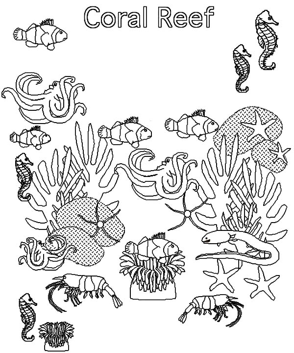 Coral Reef coloring #15, Download drawings
