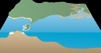 Coral Reef svg #2, Download drawings