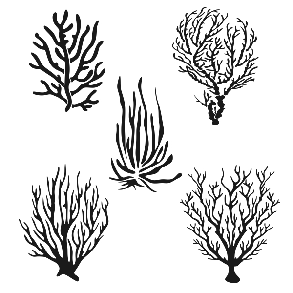 Coral svg #134, Download drawings