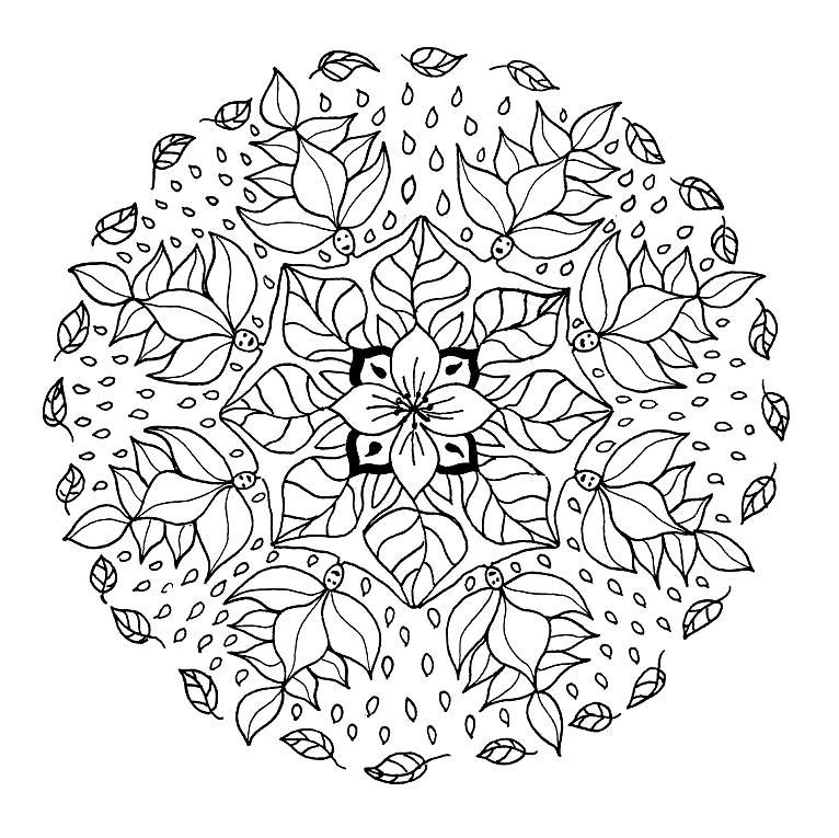 Cordillera Oriental coloring #17, Download drawings