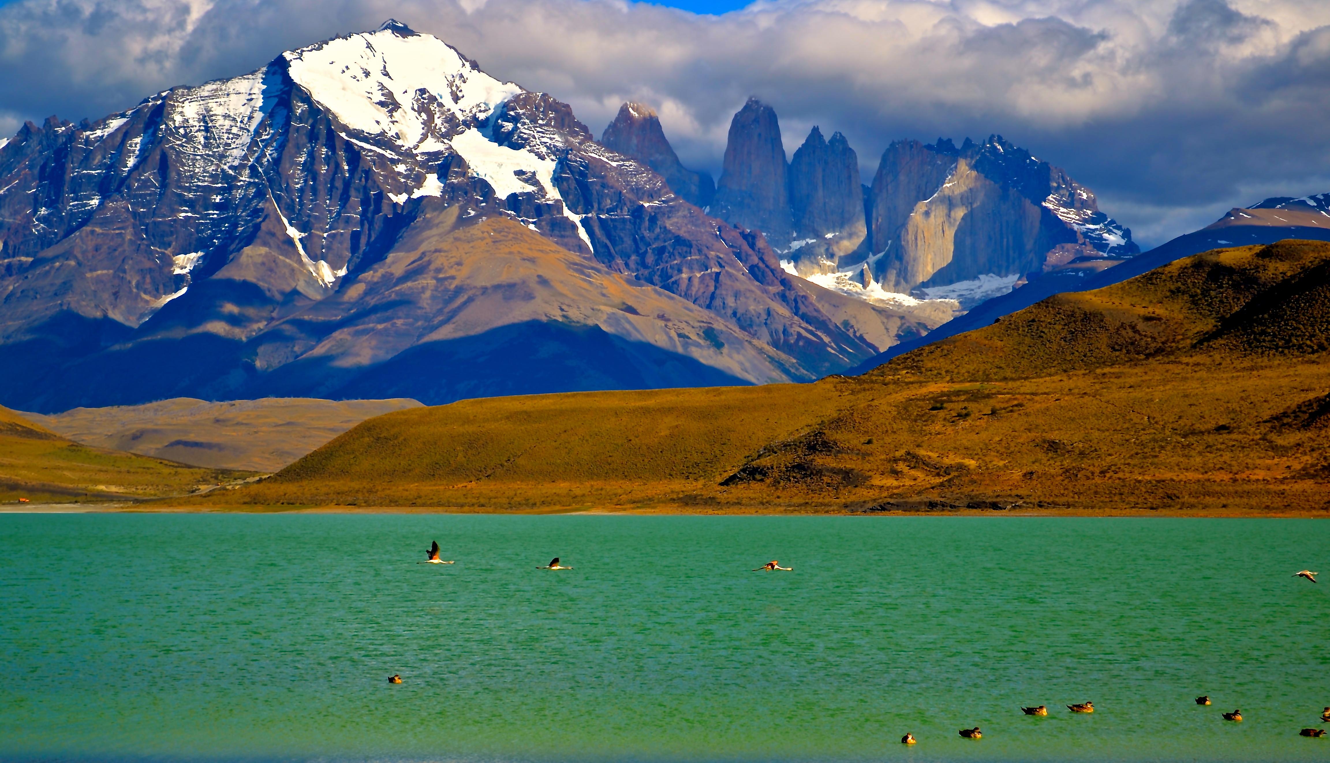 Cordillera Paine coloring #5, Download drawings