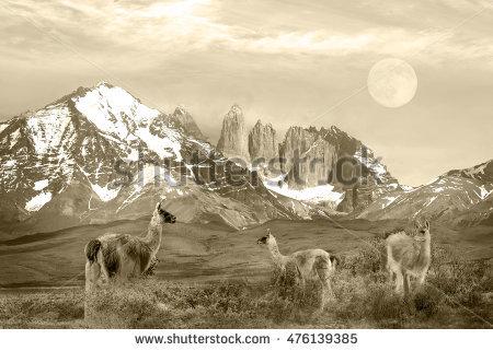 Cordillera Paine coloring #8, Download drawings