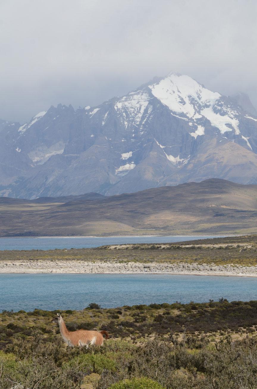 Cordillera Paine coloring #3, Download drawings