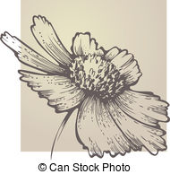 Coreopsis clipart #7, Download drawings