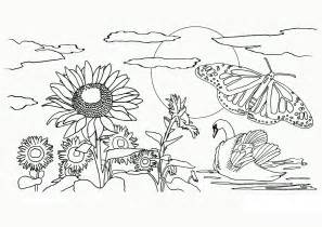 Coreopsis coloring #9, Download drawings
