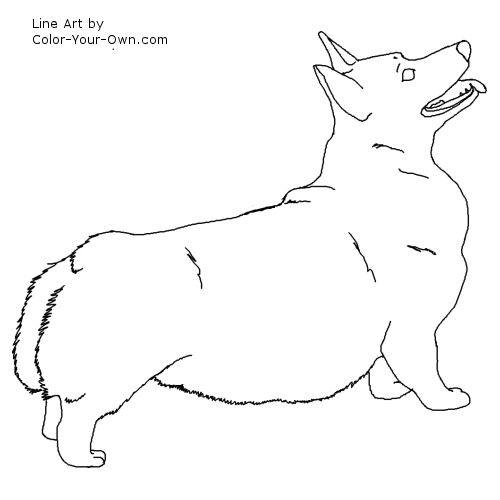 Corgi  coloring #6, Download drawings