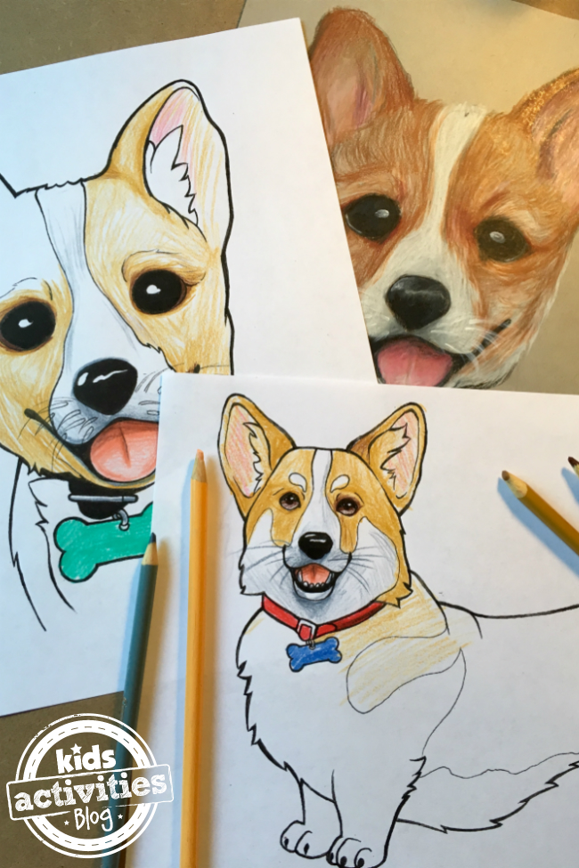Corgi  coloring #7, Download drawings