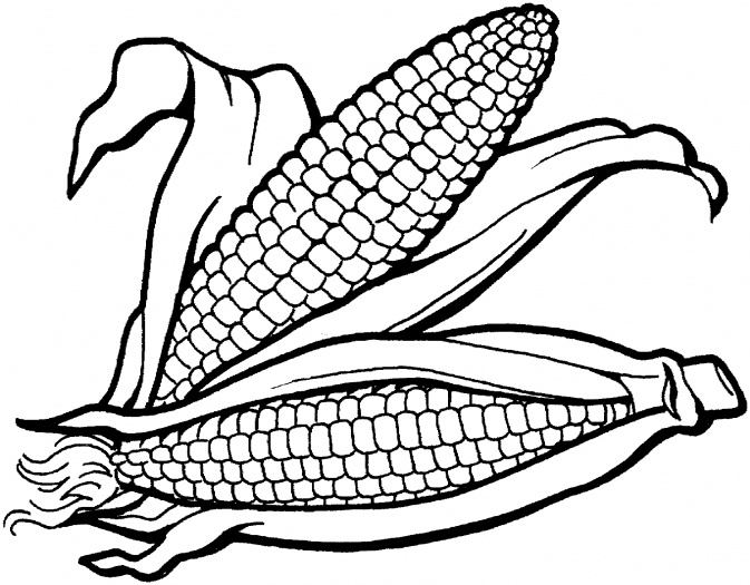 Corn clipart #7, Download drawings