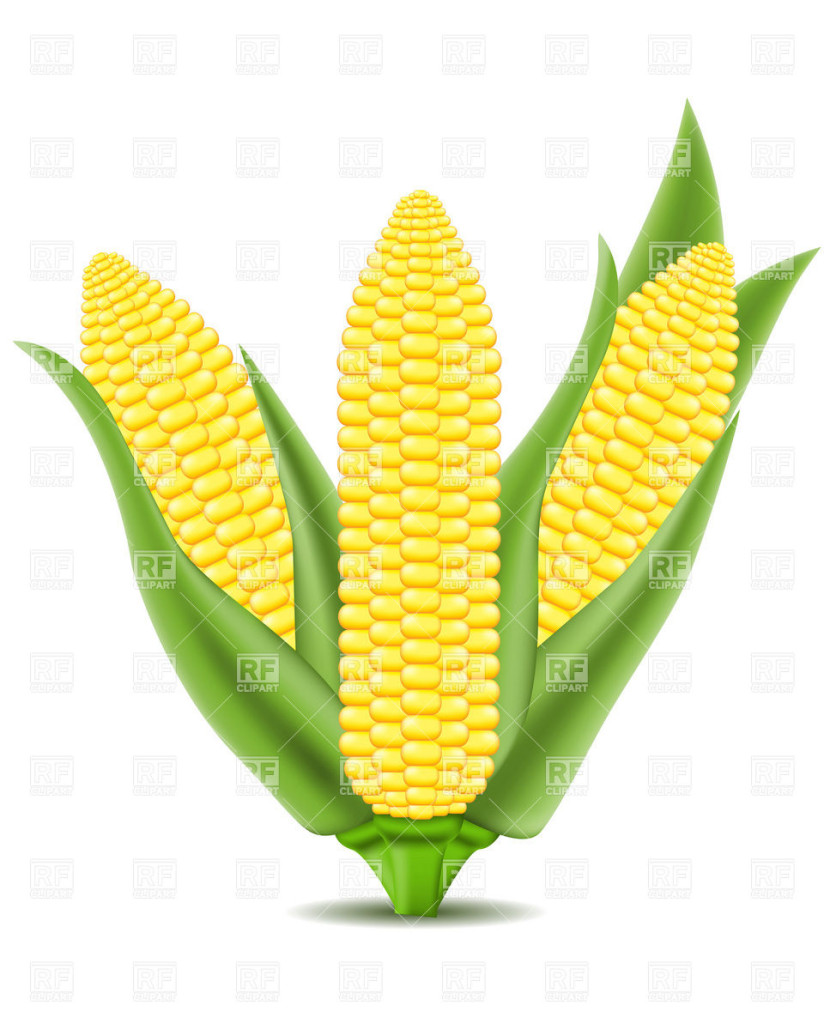 Corn clipart #5, Download drawings