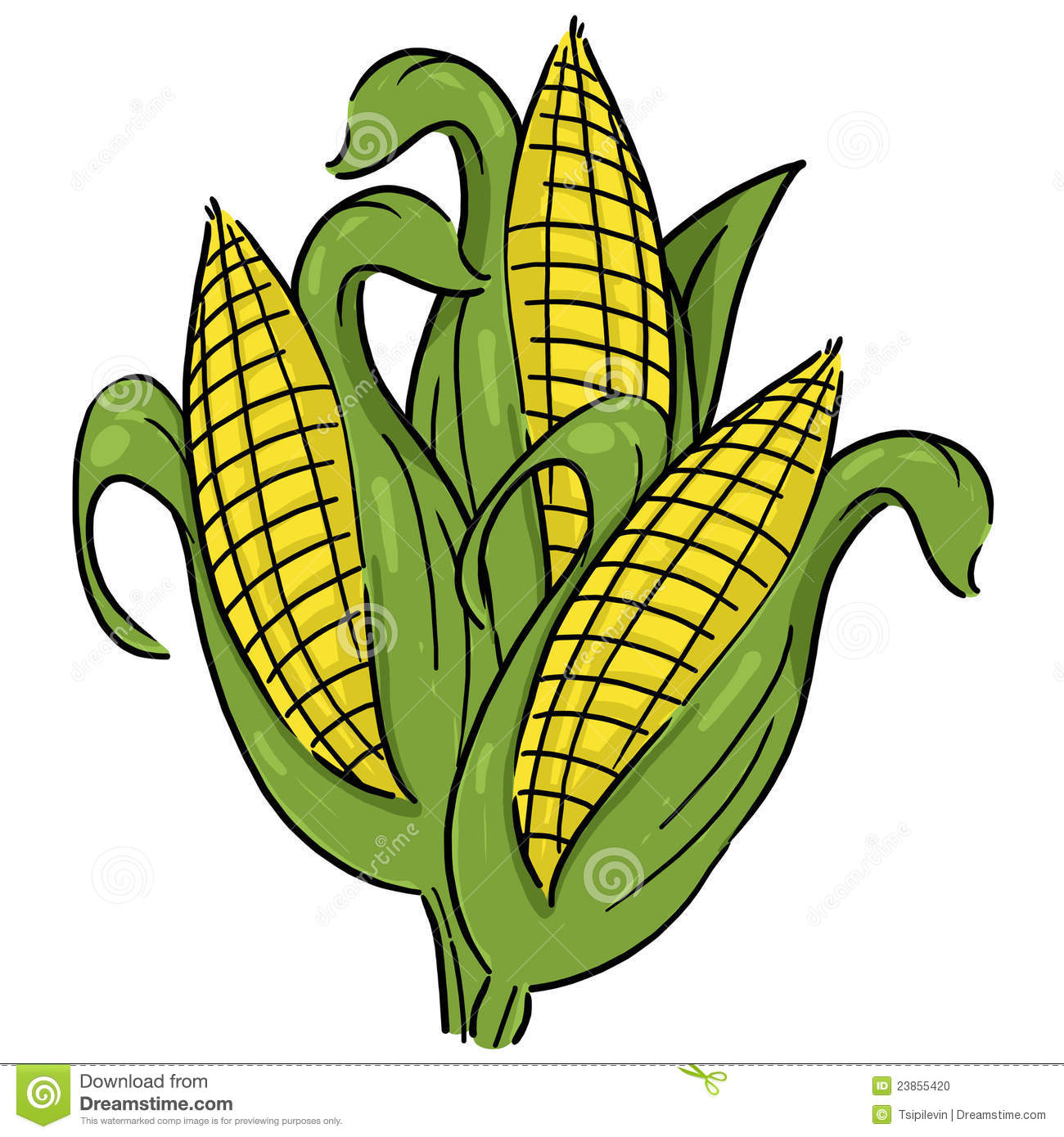 Corn clipart #10, Download drawings