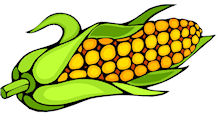 Corn clipart #15, Download drawings