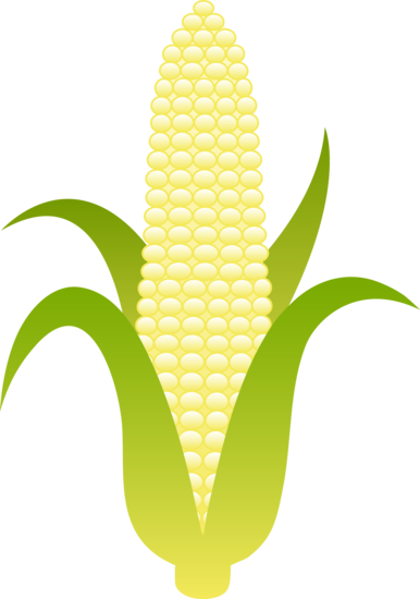 Corn clipart #8, Download drawings
