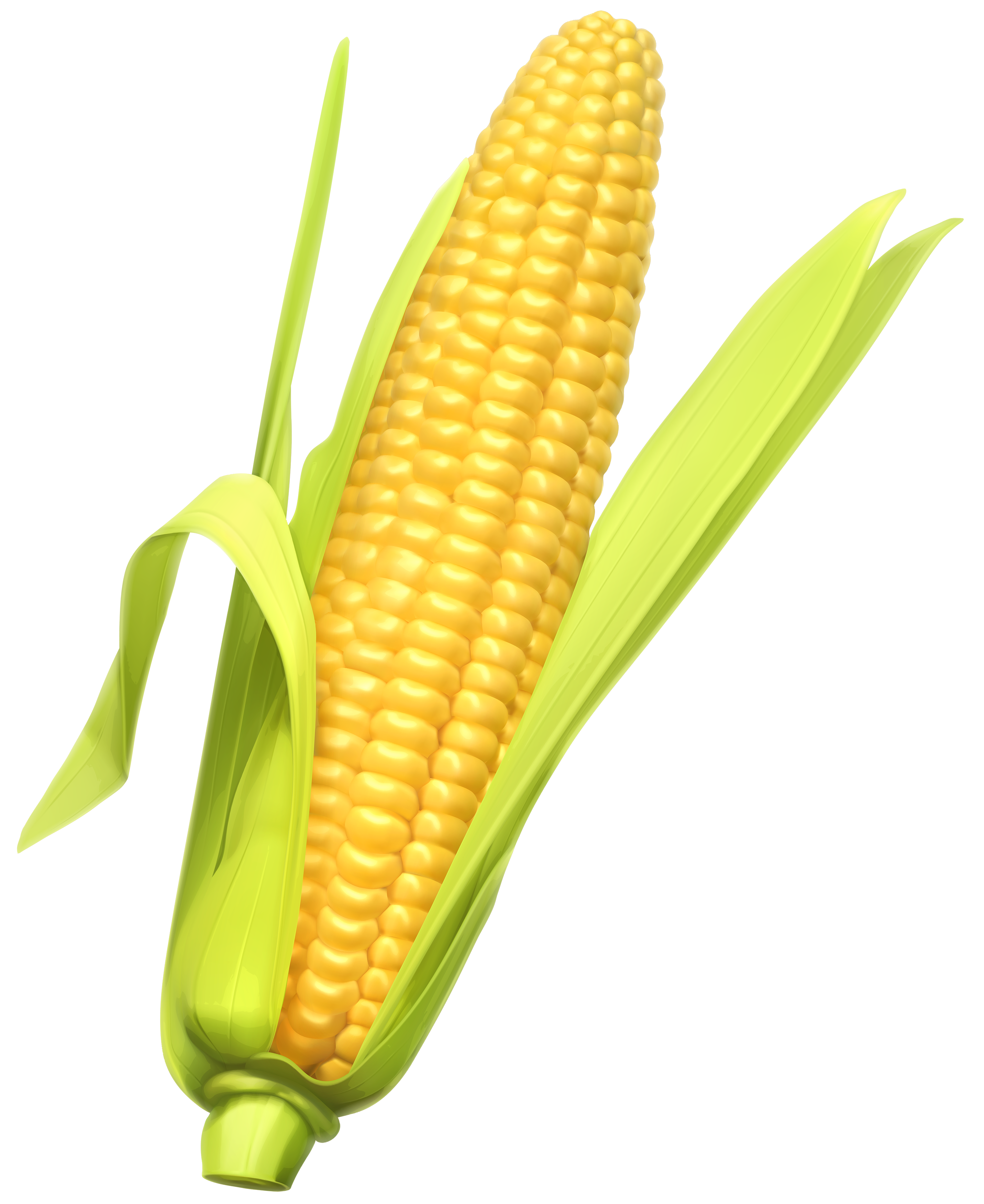 Corn clipart #1, Download drawings
