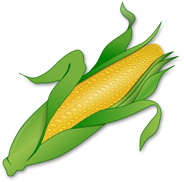 Corn clipart #11, Download drawings