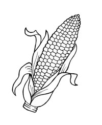Corn coloring #9, Download drawings