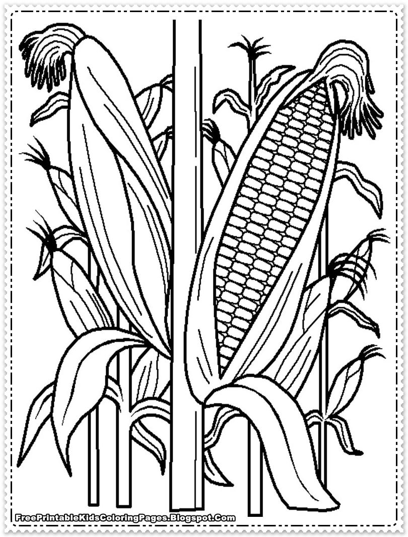 Corn coloring #7, Download drawings