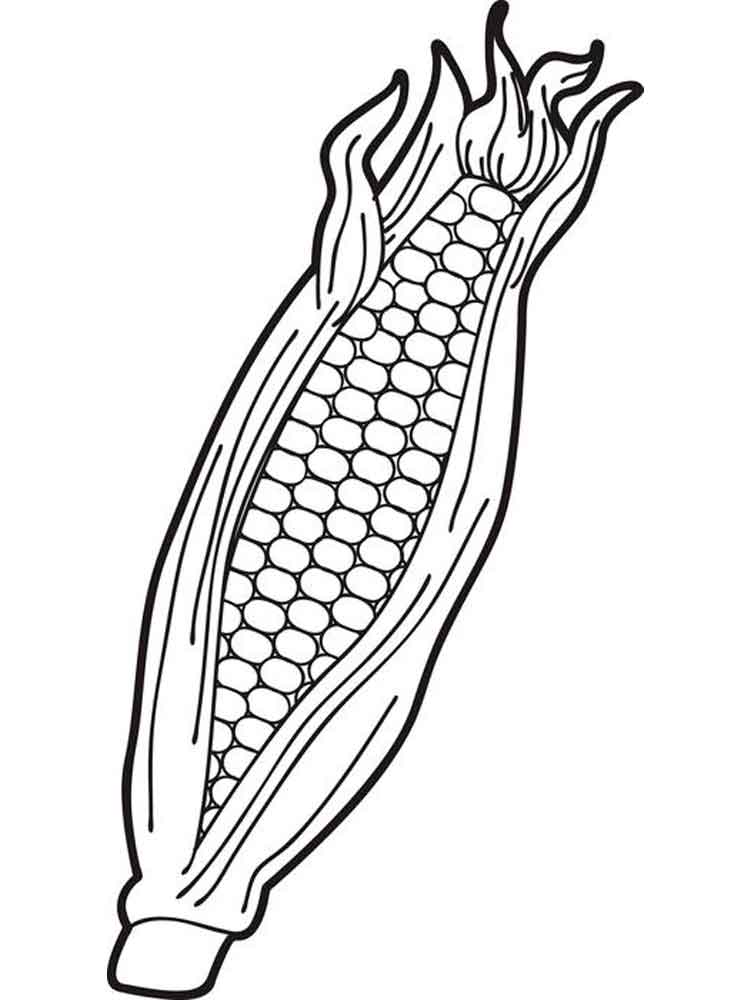 Corn coloring #2, Download drawings
