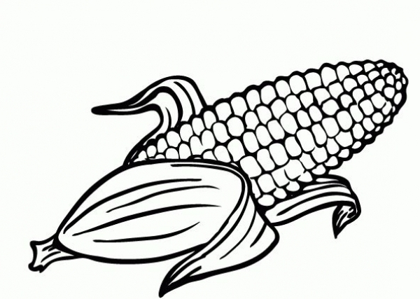 Corn coloring #5, Download drawings