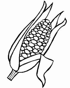 Corn coloring #19, Download drawings