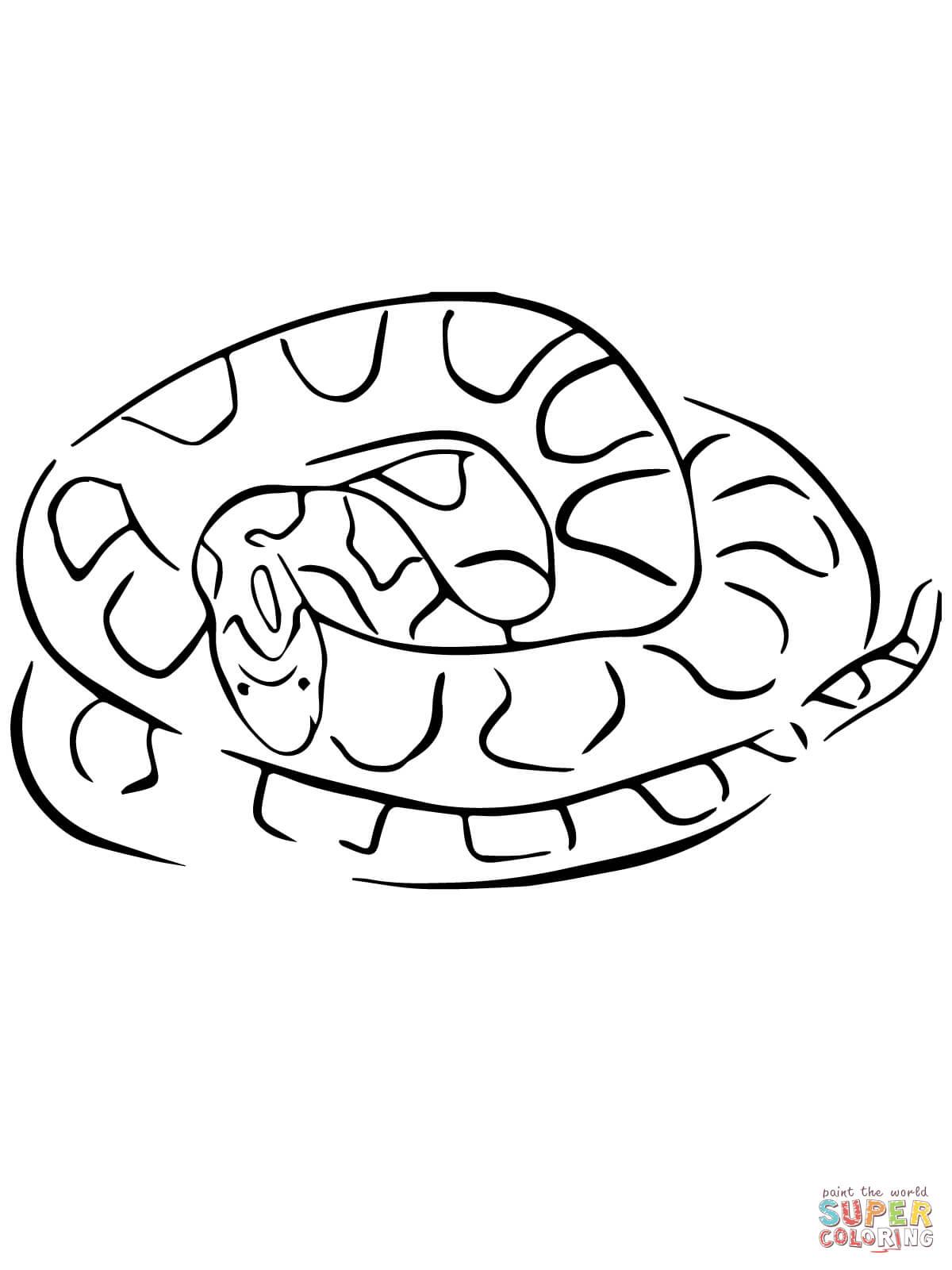 Corn Snake coloring #13, Download drawings