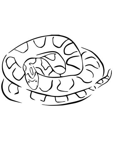 Corn Snake coloring #11, Download drawings