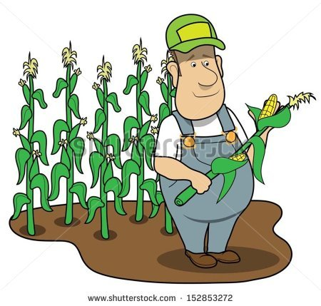 Cornfield clipart #10, Download drawings