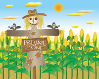 Cornfield clipart #9, Download drawings