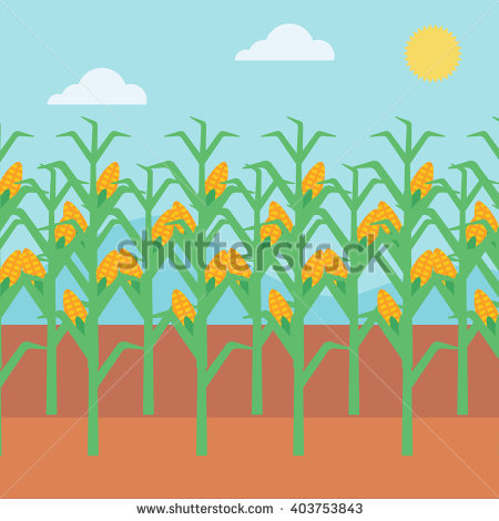 Cornfield clipart #6, Download drawings
